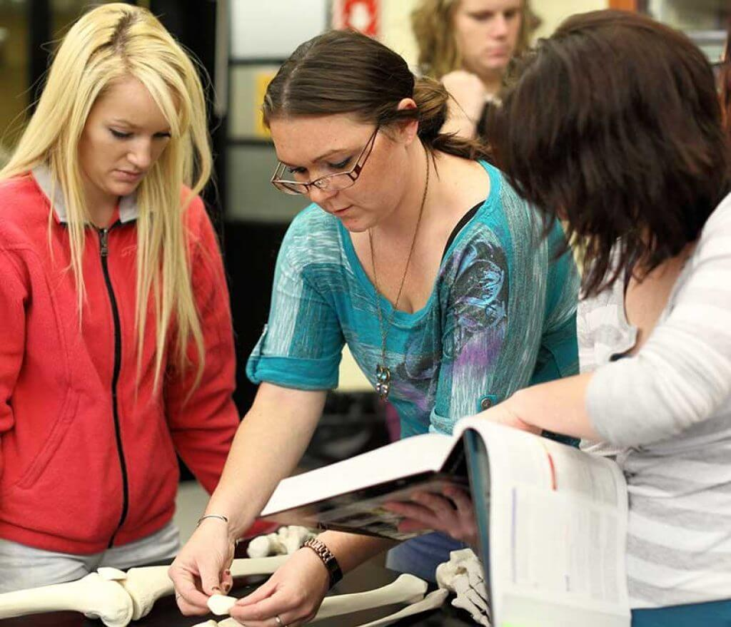 students working with a bone